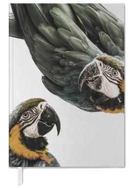 Birds of Paradise 01 -Terminplaner