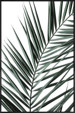 Phoenix - Poster in kunststof lijst