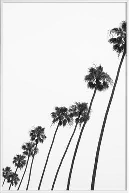 Cali Palms - Poster in kunststof lijst