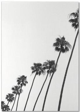 Cali Palms -Notizblock