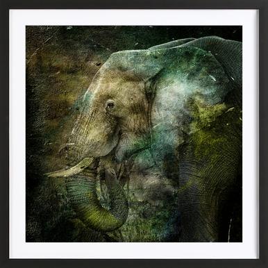 Ned Framed Print