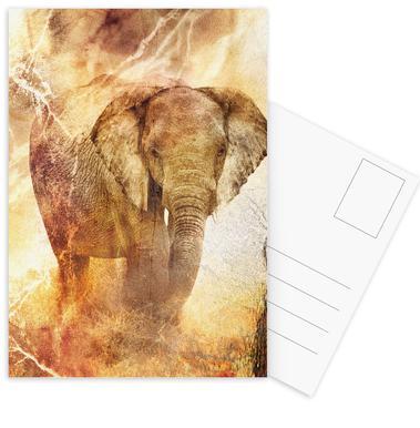 Tusk Postcard Set