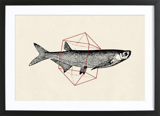 Fish in Geometrics II Framed Print