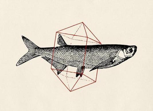 Fish in Geometrics II Canvas Print