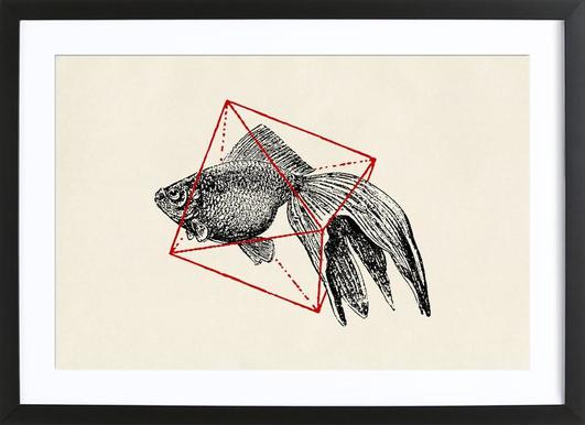Fish in Geometrics III Framed Print