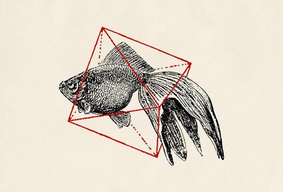 Fish in Geometrics III Acrylic Print