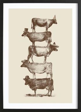 Cow Cow Nuts Framed Print