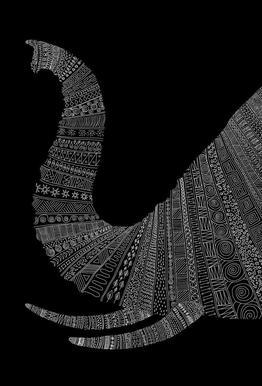 Elephant 02 -Alubild