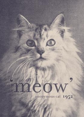 Famous Quote - Cat Canvas Print