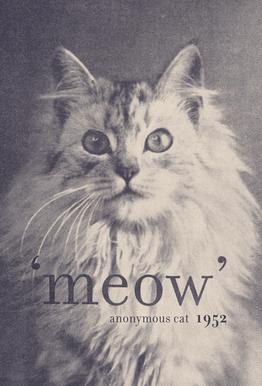 Famous Quote - Cat Aluminium Print