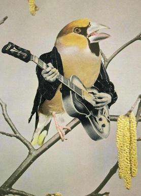 rock chick Canvas Print