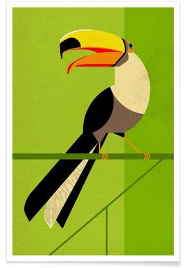 Vintage Toucan Poster