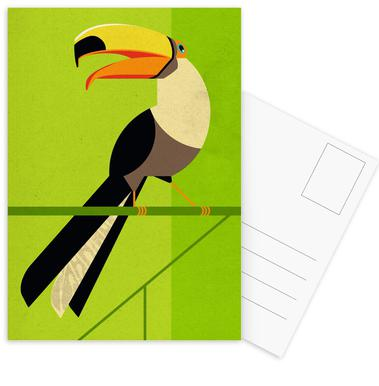 Toucan Postcard Set