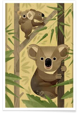 Vintage koala poster
