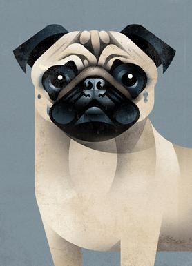 Pug canvas doek