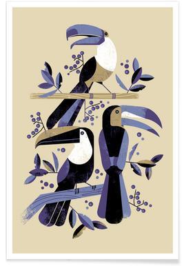 Toucan III Poster