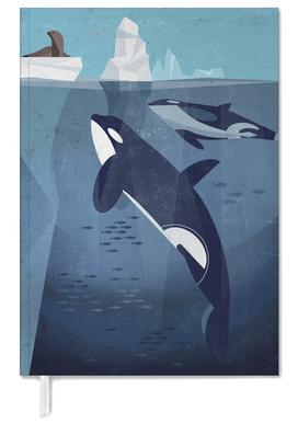 Orca -Terminplaner