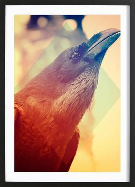 Crow -Bild mit Holzrahmen