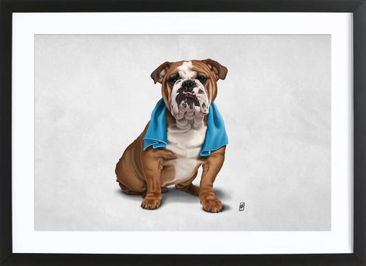 Bull (Wordless) Framed Print