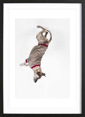 The Tailwaggers 1-2 Framed Print