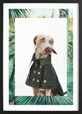 The Tailwaggers 2-3 Framed Print