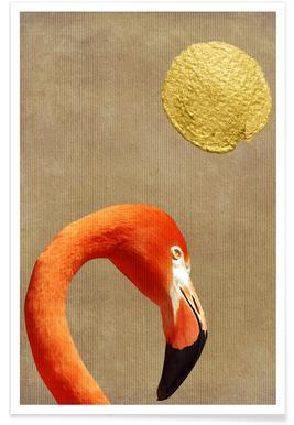Flamingo Awakening Poster