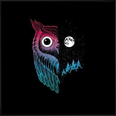 Night Owl -Bild mit Kunststoffrahmen