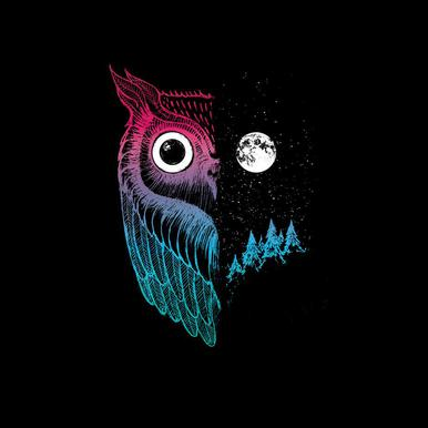 Night Owl -Acrylglasbild