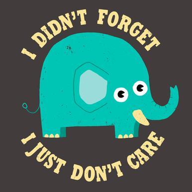 An Elephant Never Cares -Alubild