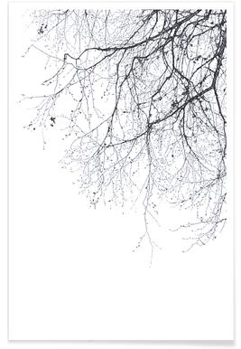 Black Branches -Poster
