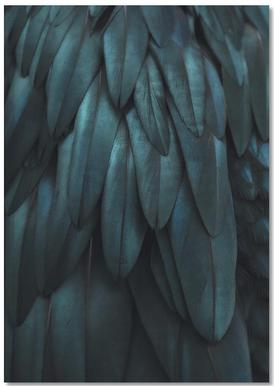Dark Feathers Notebook