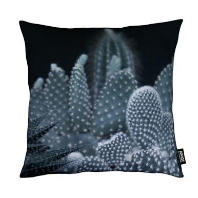 Dark Plants 1 Cacti