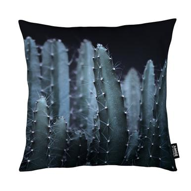 Dark Plants 2 Cacti