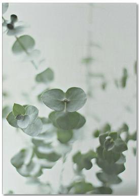 Eucalyptus Green 2 bloc-notes