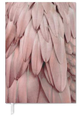 Pastel Feathers