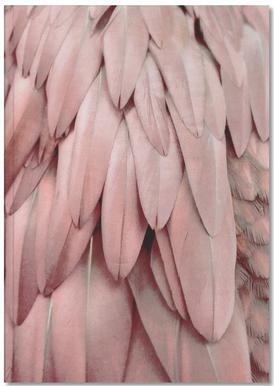 Pastel Feathers Notebook