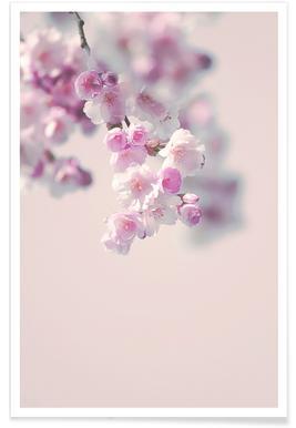 Pastel Rose Cherry II -Poster