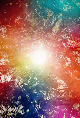 Sunshine Akrylglastavla