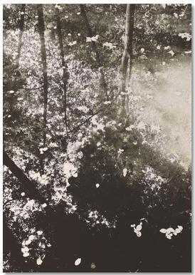 Tiergarten 4 -Notizblock