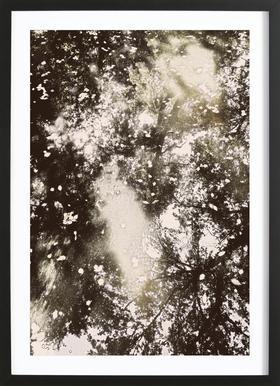 Tiergarten 6 Framed Print