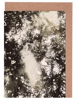 Tiergarten 6