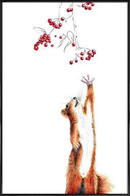 Squirrel ingelijste poster