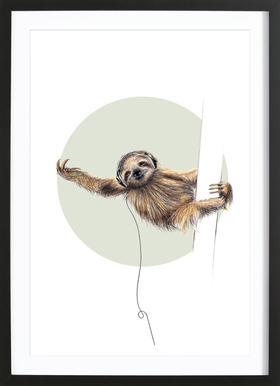 Sloth -Bild mit Holzrahmen