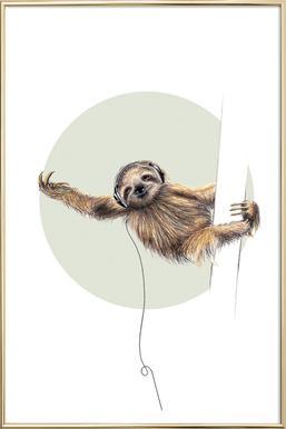 Sloth Poster in Aluminium Frame