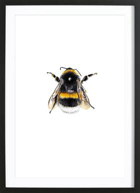 Bumblebee 01 - Poster in Wooden Frame