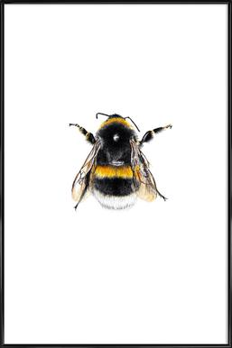 Bumblebee 01 ingelijste poster