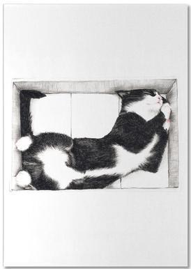 Katze im Karton -Notizblock