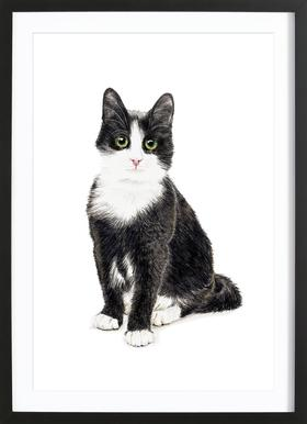 Katze Murmelauge Framed Print