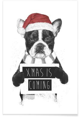 Xmas Dog Drawing Poster