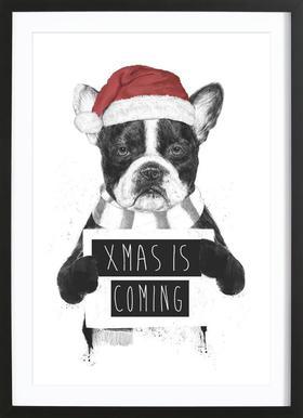 Xmas Dog Framed Print